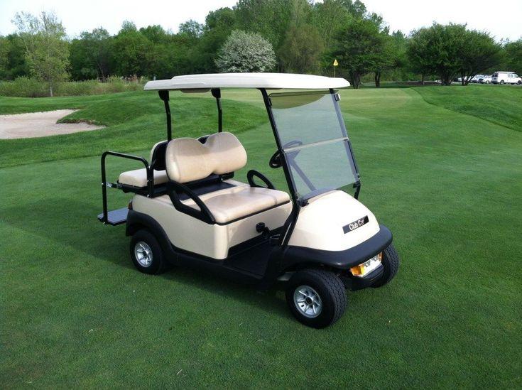 Pets Ride Golf Cart